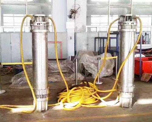 salt water pumps price