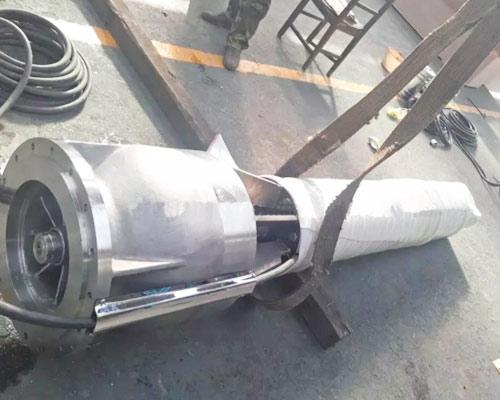 ss pumps manufacturer